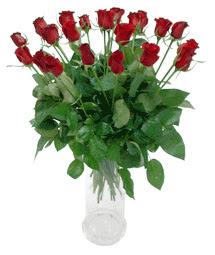 Manisa anneler günü çiçek yolla  11 adet kimizi gülün ihtisami cam yada mika vazo modeli