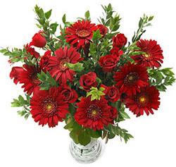 5 adet kirmizi gül 5 adet gerbera aranjmani  Manisa çiçek mağazası , çiçekçi adresleri