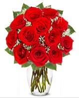 12 adet vazoda kıpkırmızı gül  Manisa çiçek yolla