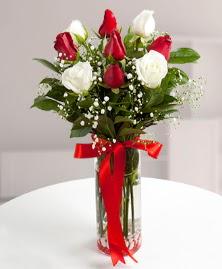 5 kırmızı 4 beyaz gül vazoda  Manisa çiçek gönderme
