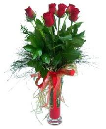 vazo içerisinde 5 kırmızı gül  Manisa çiçekçiler