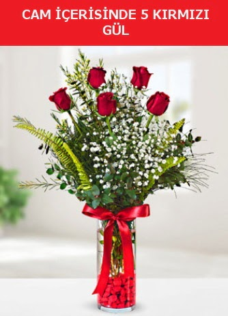 Cam içerisinde 5 adet kırmızı gül  Manisa güvenli kaliteli hızlı çiçek