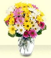 Manisa çiçek yolla , çiçek gönder , çiçekçi   mevsim çiçekleri mika yada cam vazo