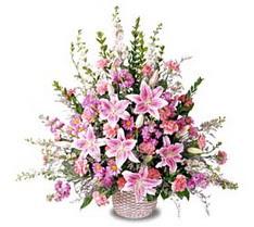 Manisa güvenli kaliteli hızlı çiçek  Tanzim mevsim çiçeklerinden çiçek modeli