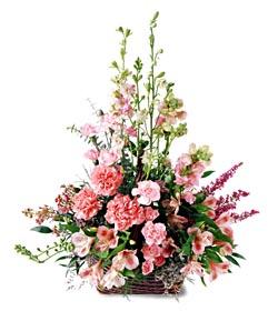 Manisa çiçek servisi , çiçekçi adresleri  mevsim çiçeklerinden özel