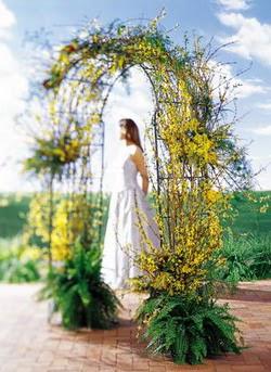 Manisa yurtiçi ve yurtdışı çiçek siparişi  güller ve mevsim çiçegi