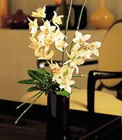 Manisa online çiçekçi , çiçek siparişi  cam yada mika vazo içerisinde dal orkide