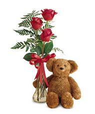 oyuncak ve güller tanzim   Manisa anneler günü çiçek yolla