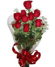 9 adet kaliteli kirmizi gül   Manisa çiçek siparişi vermek