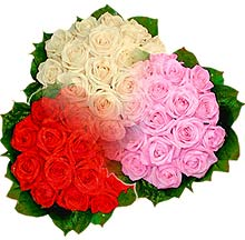 3 renkte gül seven sever   Manisa çiçek online çiçek siparişi