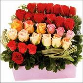 15 adet renkli gül ve cam   Manisa kaliteli taze ve ucuz çiçekler