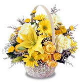sadece sari çiçek sepeti   Manisa cicekciler , cicek siparisi