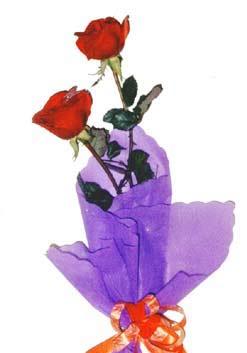 2  adet kirmizi gül buketi   Manisa çiçek online çiçek siparişi