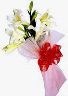 Manisa çiçek online çiçek siparişi  ince vazoda gerbera ve ayi