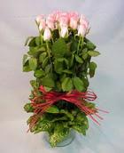 13 adet pembe gül silindirde   Manisa uluslararası çiçek gönderme