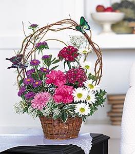 Manisa çiçek gönderme  sepet içerisinde karanfil gerbera ve kir çiçekleri