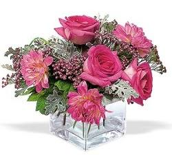 Manisa çiçek gönderme  cam içerisinde 5 gül 7 gerbera çiçegi