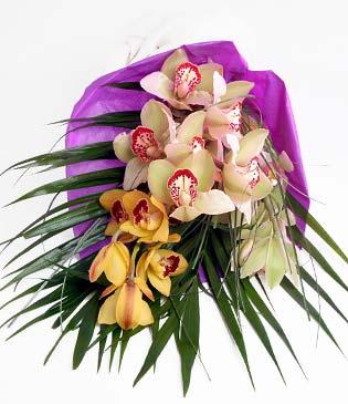 Manisa çiçek gönderme  1 adet dal orkide buket halinde sunulmakta