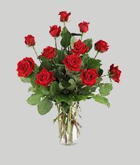 Manisa çiçek gönderme  11 adet kirmizi gül vazo halinde