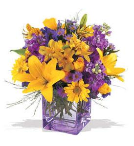 Manisa çiçek siparişi sitesi  cam içerisinde kir çiçekleri demeti