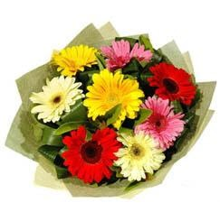 9 adet karisik gerbera demeti  Manisa çiçek siparişi sitesi