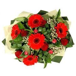Manisa çiçek servisi , çiçekçi adresleri   5 adet kirmizi gül 5 adet gerbera demeti