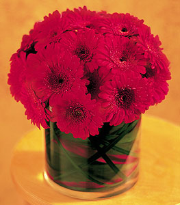 Manisa çiçek servisi , çiçekçi adresleri  23 adet gerbera çiçegi sade ve sik cam içerisinde
