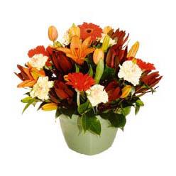 mevsim çiçeklerinden karma aranjman  Manisa online çiçek gönderme sipariş