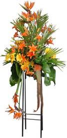 Manisa güvenli kaliteli hızlı çiçek  perförje tanzimi dügün nikah ve açilislara
