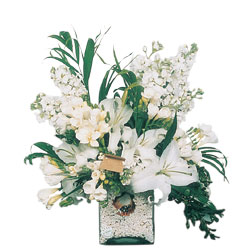 Manisa çiçek yolla , çiçek gönder , çiçekçi   sadece beyazlardan olusmus mevsim cam yada mika tanzim