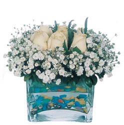 Manisa kaliteli taze ve ucuz çiçekler  mika yada cam içerisinde 7 adet beyaz gül