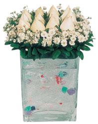 Manisa kaliteli taze ve ucuz çiçekler  7 adet beyaz gül cam yada mika vazo tanzim