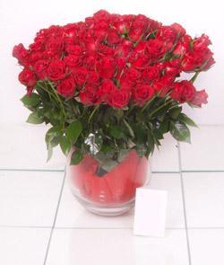 Manisa çiçek yolla  101 adet kirmizi gül
