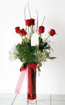 Manisa çiçek gönderme  6 adet kirmizi gül ve cam yada mika vazo
