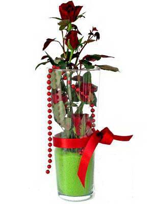 Manisa çiçek gönderme sitemiz güvenlidir  Cam yada mika içerisinde 9 adet kirmizi gül - sevdiklerinize özel