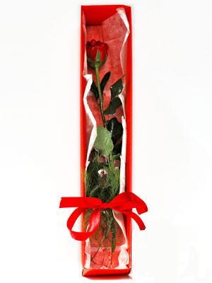 Manisa internetten çiçek siparişi  1 adet kutuda gül