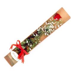 Manisa çiçek online çiçek siparişi  Kutuda tek 1 adet kirmizi gül çiçegi