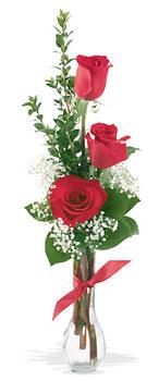 Manisa çiçek gönderme  mika yada cam vazoda 3 adet kirmizi gül