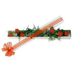 Manisa güvenli kaliteli hızlı çiçek  6 adet kirmizi gül kutu içerisinde