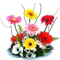 Manisa çiçek mağazası , çiçekçi adresleri  camda gerbera ve mis kokulu kir çiçekleri