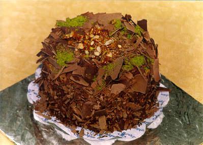 Çikolatali 4 ila 6 kisilik yas pasta  Manisa cicekciler , cicek siparisi