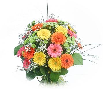 13 adet gerbera çiçegi buketi  Manisa çiçek gönderme sitemiz güvenlidir