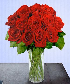 Anneme 12 adet cam içerisinde kirmizi gül  Manisa güvenli kaliteli hızlı çiçek