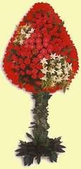 Manisa 14 şubat sevgililer günü çiçek  dügün açilis çiçekleri  Manisa hediye çiçek yolla