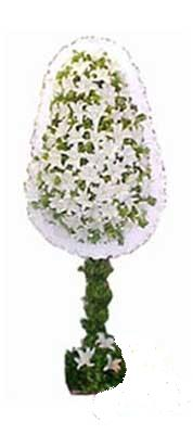 Manisa güvenli kaliteli hızlı çiçek  nikah , dügün , açilis çiçek modeli  Manisa çiçek gönderme sitemiz güvenlidir