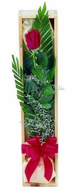 Sade ve gösterisli kutu içerisinde tek gül  Manisa kaliteli taze ve ucuz çiçekler