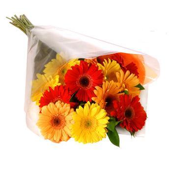 Karisik renklerde gerbera buketi  Manisa çiçek gönderme
