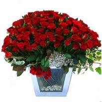 Manisa online çiçekçi , çiçek siparişi   101 adet kirmizi gül aranjmani