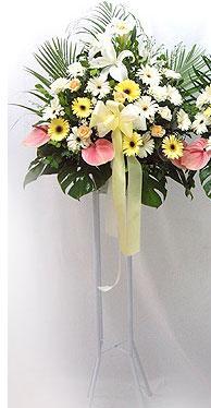 Manisa çiçek gönderme sitemiz güvenlidir   perförje çiçegi dügün çiçekleri