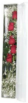 Manisa güvenli kaliteli hızlı çiçek   5 adet gülden kutu güller